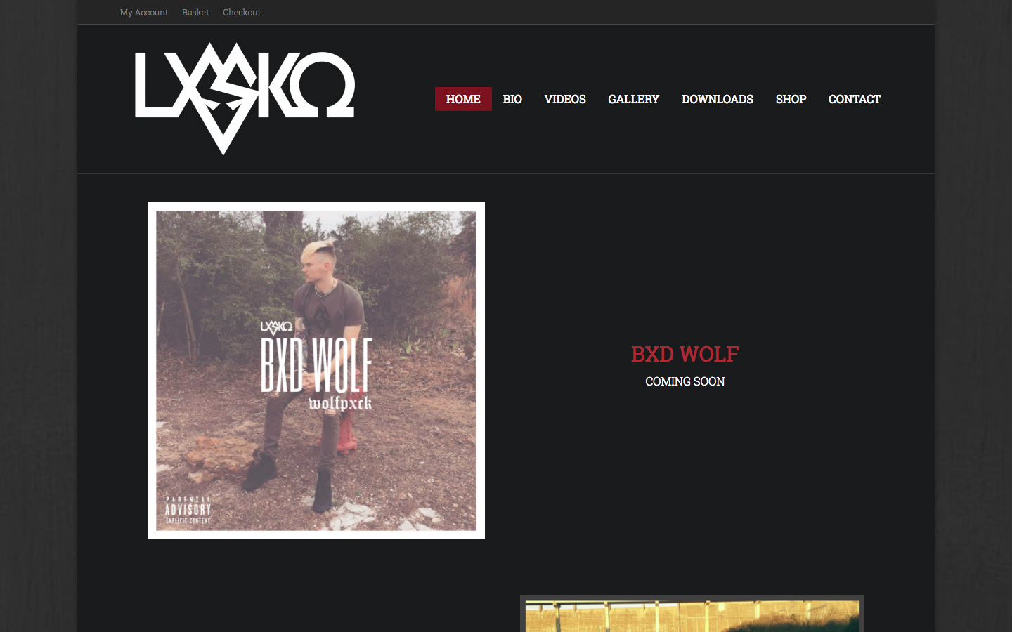 Website Design and hosting for British Musical Artist Lxsko